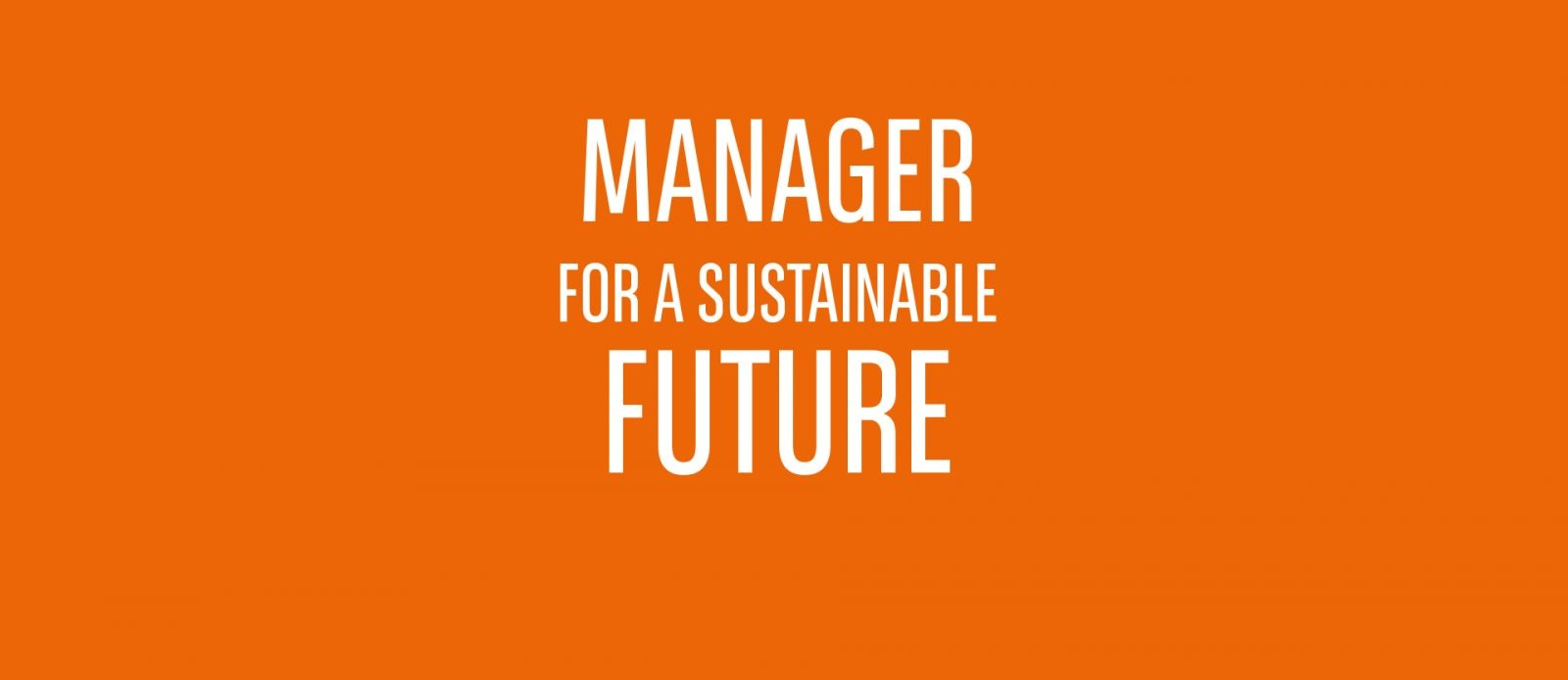 Manager for a Sustainable Future